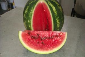 Magvas görögdinnye
