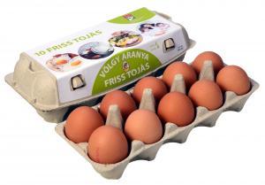 Friss tojás L méret 10db-os (zöld) doboz